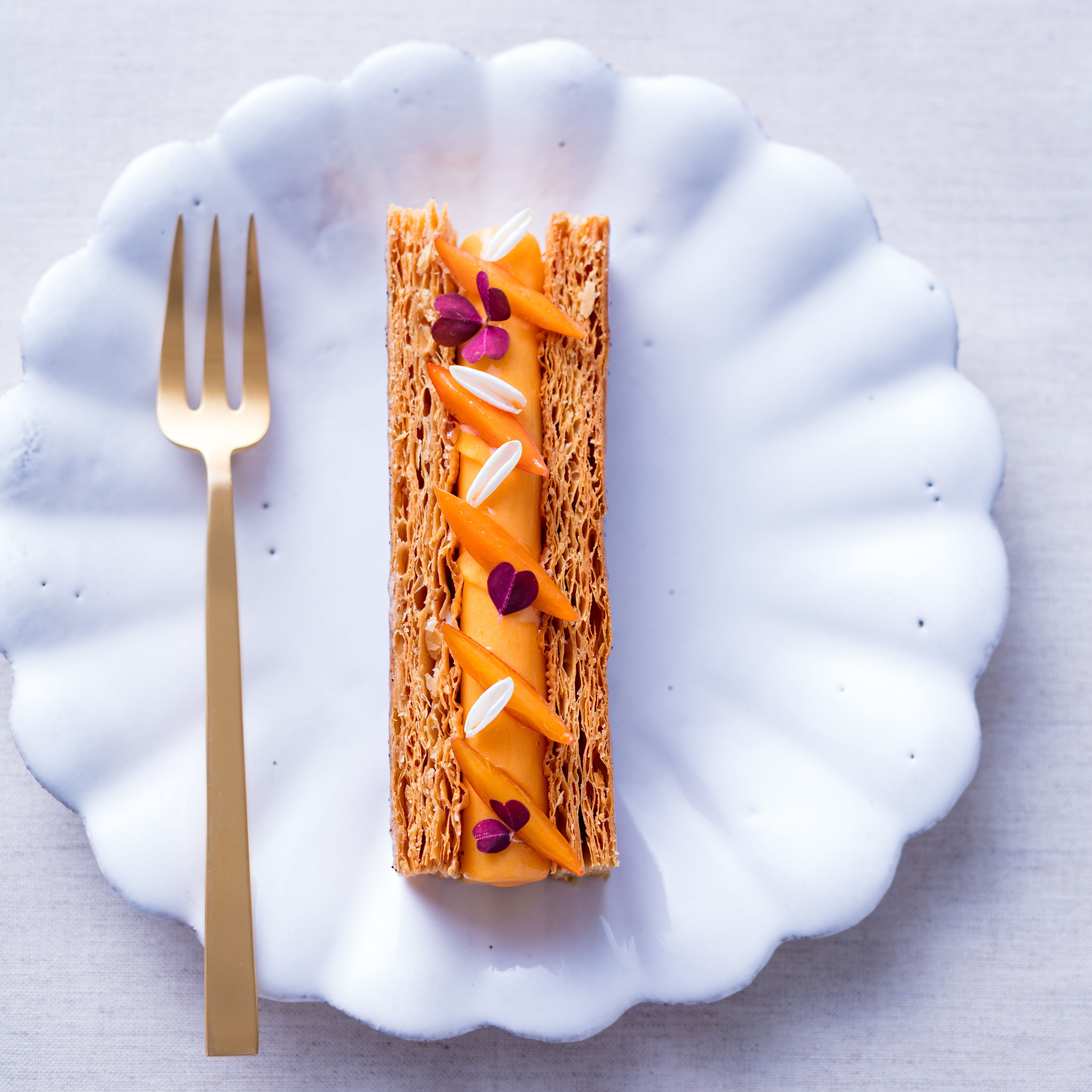 mille feuilles jpeg - Copie