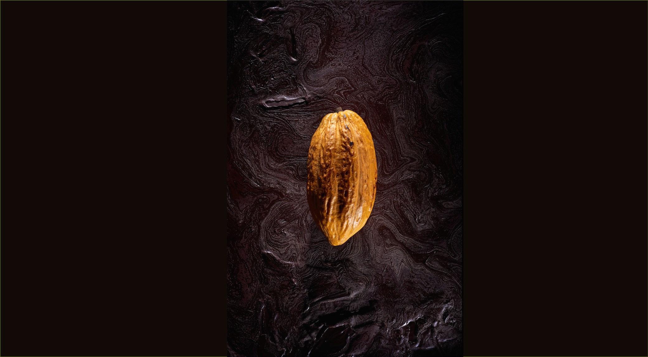 Frédéric Marr - Chocolatier - RRRAW - Montreuil